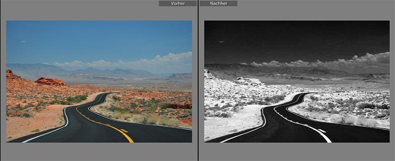 lightroom preset black white infrared