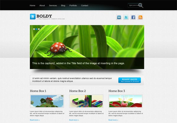 Boldy WordPress Theme
