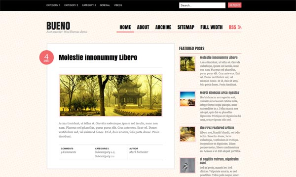 Bueno WordPress Theme
