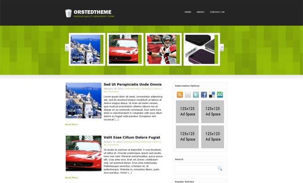 Orsted WordPress Theme