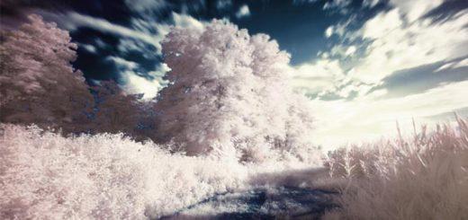 infrarot fotografie