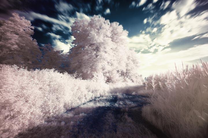 infrarot landschaft