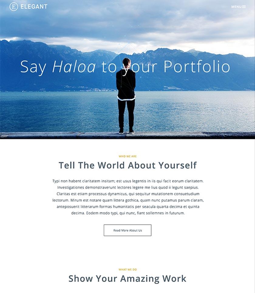 Portfolio psd template elegant