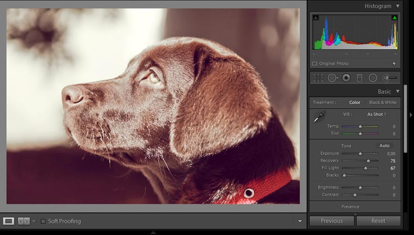 Lightroom aufhellicht