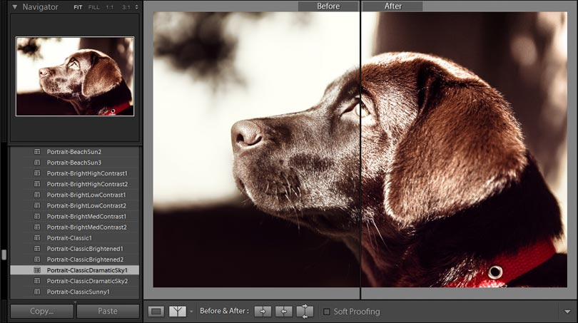 lightroom preset in aktion