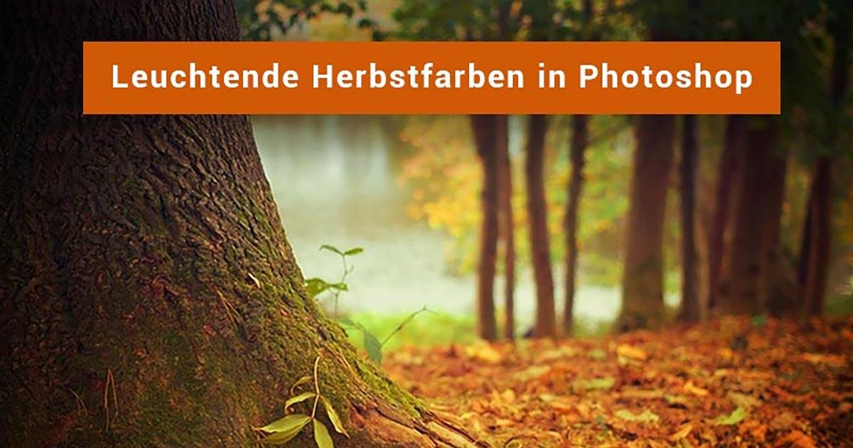 herbstbilder photoshop