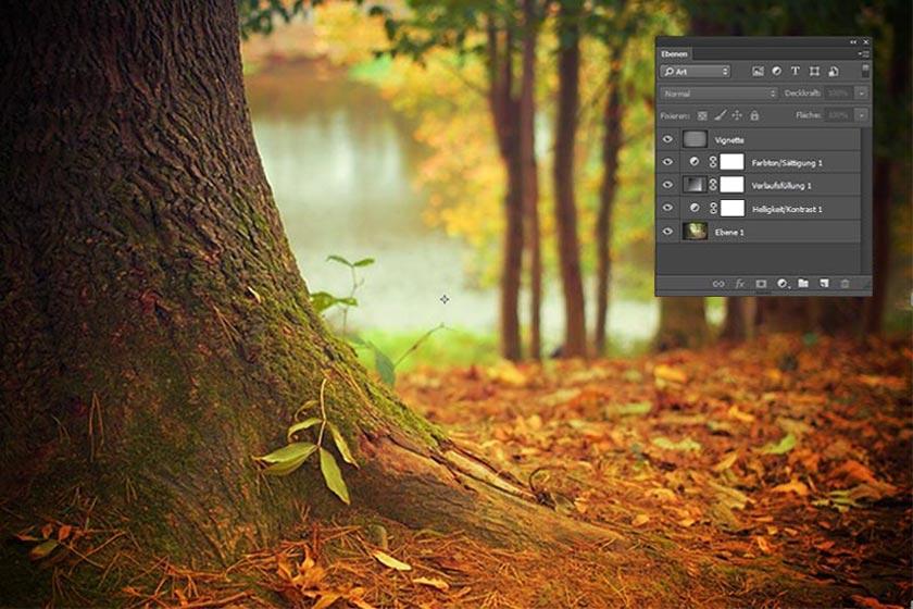 Herbstfoto mit leuchtenden Farben