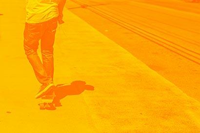 Duotone Effekt gelb